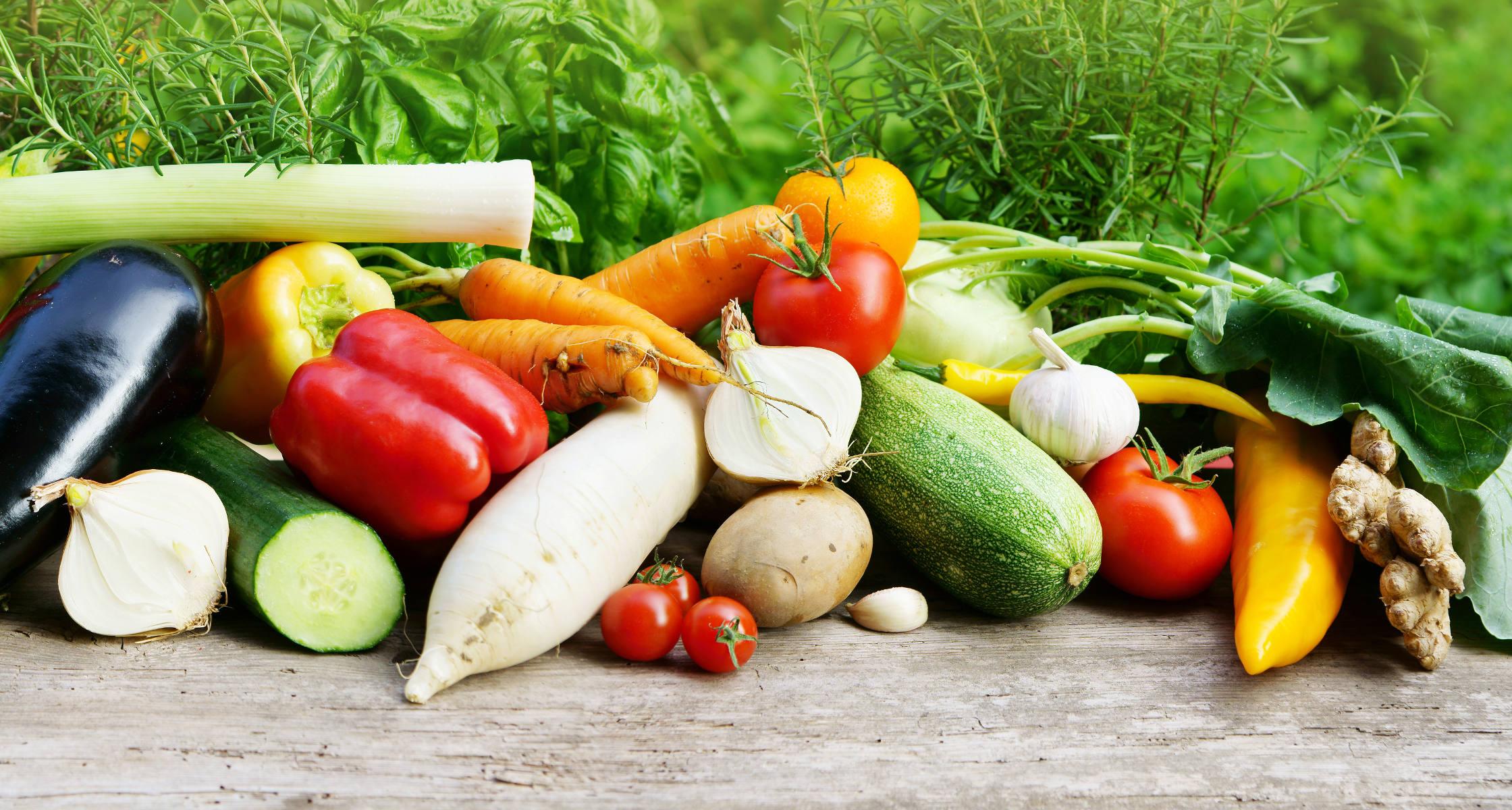 Blog über vegetarische Ernährung