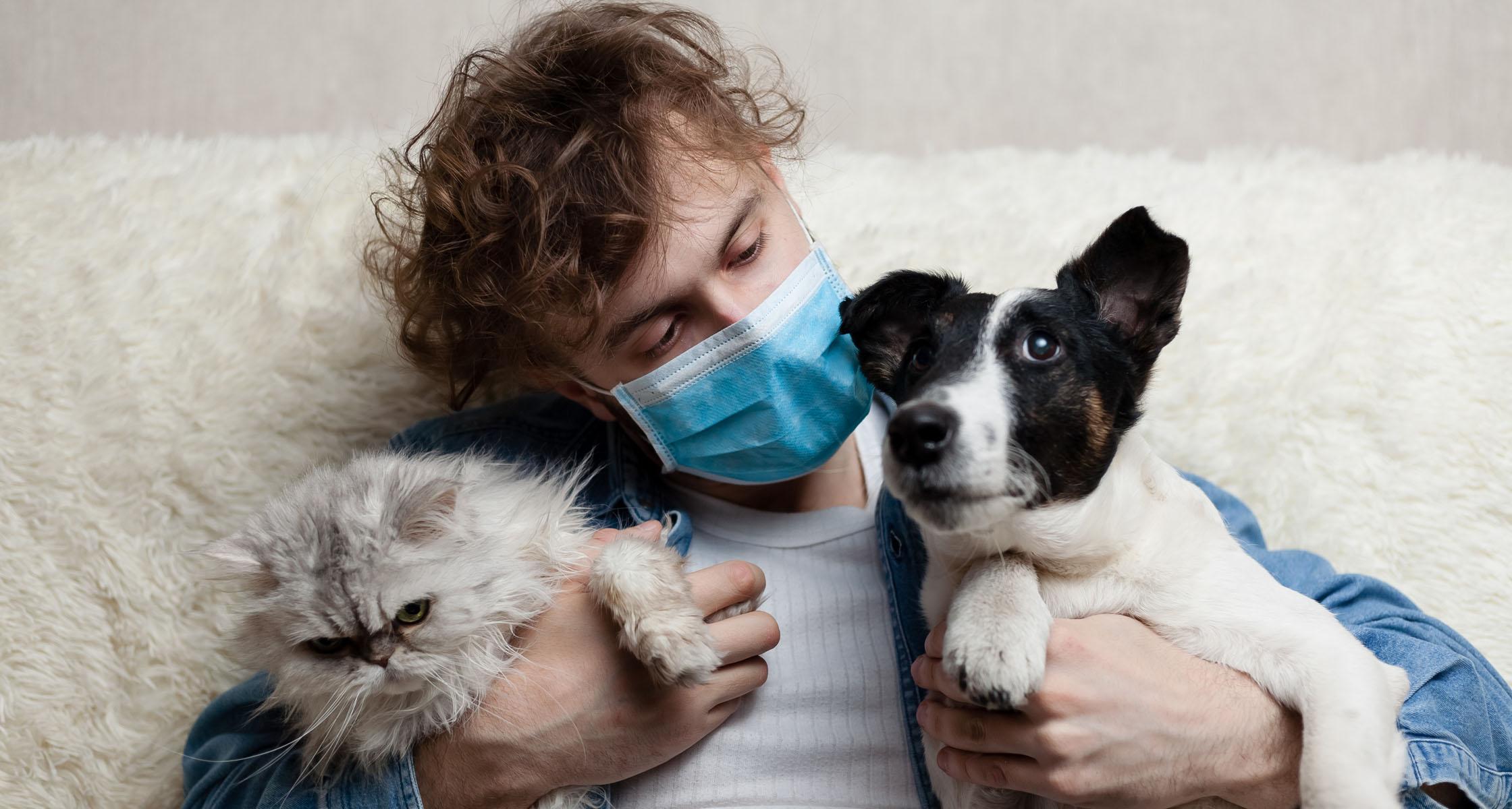 COVID-19-Erkrankte können Hunde und Katzen anstecken