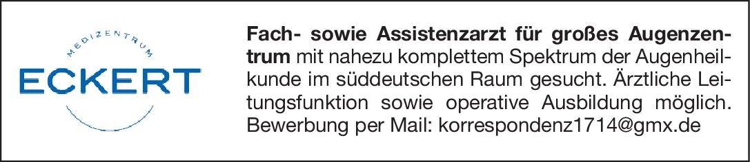 Augenzentrum Eckert Facharzt Augenheilkunde Augenheilkunde Arzt / Facharzt